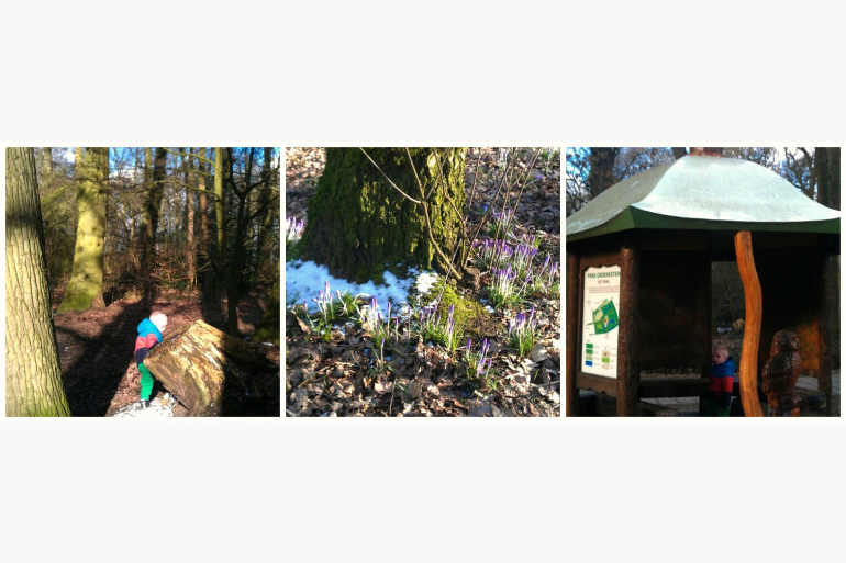 """""""Het Uilenbos"""" – Wandelen In Park Groenestein"""