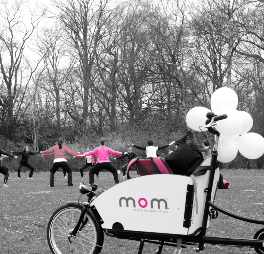 Mom In Balance: Voor Fitte Moeders En Moeders-to-be