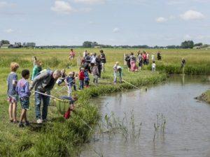 Op zoek naar waterdiertjes en kriebelbeestjes @ Bezoekerscentrum Reitdiep | Groningen | Groningen | Nederland
